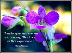 Forgiveness Is A Bold Act