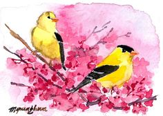 ACEO Limited Edition- Goldfinches in red 1/25, in watercolor