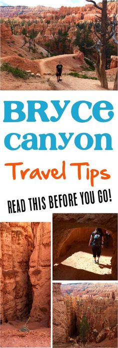 Here S An Epic 4 Day Zion National Park Itinerary Pinterest Action Park And Utah