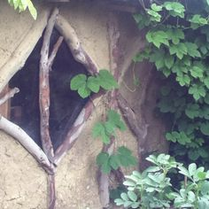 Wattle and daub garden house