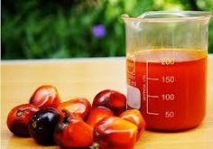 15 Health Benefits of Palm Oil