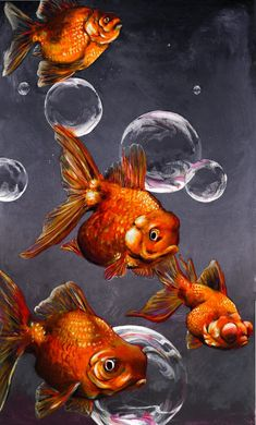 Goldfish and Bubbles by LexxieLizzie on DeviantArt Gold Fish Painting, Painting & Drawing, Poisson Combatant, Fish Crafts, Beautiful Fish, Animal Wallpaper, Fish Art, Tropical Fish, Zentangle