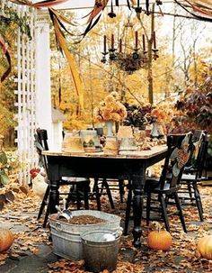 Its not the black and orange that Im drawn to, but the whole outdoor fall harvest dinner theme. Because some day I WILL have a back patio for dining al fresco! Harvest Party, Fall Harvest, Harvest Time, Outdoor Halloween Parties, Party Outdoor, Gazebos, Decoration Table, Autumn Decorations, Seasonal Decor