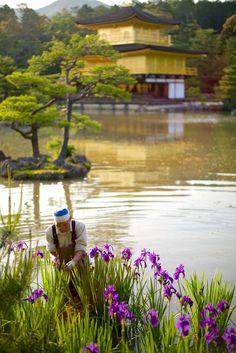 Kinkaku-ji Temple, Kyoto, Japan | by D. Moritz Marutschke on 500px