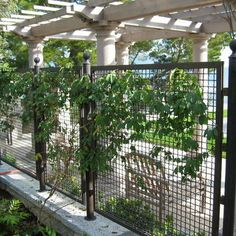 Metal Fence Design Ideas, Pictures, Remodel, and Decor - page 14