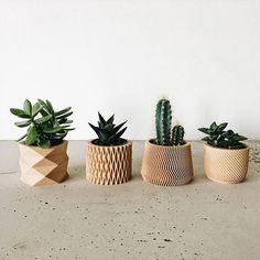 Set de 4 petits pots / cache-pots pour plantes grasses et cactées, design, hygge, géométrique et minimaliste imprimés en 3D en BOIS.  Apportez une petite touche doriginalité et de modernité à vos pots de plantes grasses et cactus avec ces 4 petits Pots / Cache-pots minimalistes et