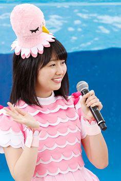 ももくろちゃんZ、イルカの乗り心地は? 八景島シーパラダイス、海の動物ショー一新(写真88枚)   乗りものニュース