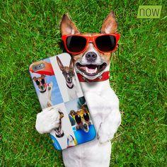 Meu cachorro é uma figura... Ama seu cachorro tb? Quel tal uma capinha personalizada com as fotos do seu melhor amigo? #casenow #capinhapersonalizada #dog #cachorro https://casenow.com.br