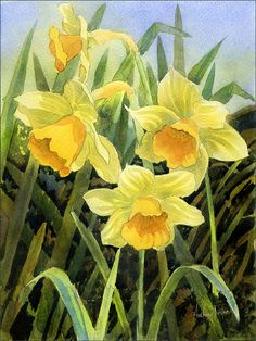 Spring Flowers Painting - Daffodils by Anthony Forster
