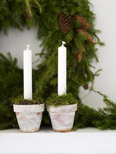 Moss in flower pot w/ white candle; idea to note: add mini silver jingle bells dispersed around moss