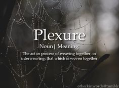 PLEXURE (noun) - The art or process of weaving together, or interweaving,; that which is woven together - Unusual Words, Weird Words, Rare Words, Unique Words, New Words, Powerful Words, Cool Words, Fancy Words, Pretty Words