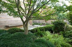 Designer Visit: A Garden Inspired by Japan, in Westchester County, New York: Gardenista