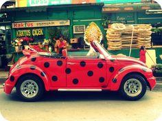"""lady """"bug"""" Volkswagen beetle ----awwww my little ladybug! Vw Bus, Auto Volkswagen, Volkswagen Germany, Beetle Bug, Vw Beetles, Lady Bug, Carros Retro, Combi Wv, Van Vw"""