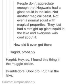 According to Jo, Godric's Animagus was a giant squid.<<<so Salazar brought a giant snake and Godric a giant squid? Harry Potter Love, Harry Potter Universal, Harry Potter Fandom, Harry Potter Memes, Yer A Wizard Harry, Albus Dumbledore, Mischief Managed, Draco Malfoy, Hogwarts