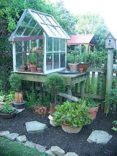 Love the smaller Greenhouse on top of a table to make it easy to work with topiaries <3