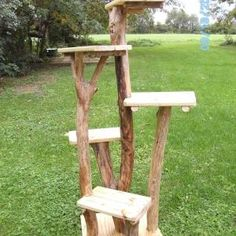 Why outdoor cat trees ? Outdoor trees are very useful if you are a breeder, operate a shelter, or foster cats. This way the cats can get up off the wet or snow covered ground and bask in the sun. These outdoor trees are made with Outdoor Cat Tree, Cat House Outdoor, Cat Site, Outdoor Cat Enclosure, Diy Cat Tree, Cat Perch, Wood Cat, Cat Towers, Cat Stands