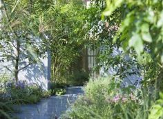 """Andy McIndoe: """"Paul Hervey Brookes has just been to Japan to build a garden for the Gardening World Cup. Although I am very familiar with RHS Chelsea Flower Show and know about other shows in the UK and US I do not know much about the newer Gardening World Cup,..."""