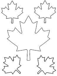 Maple leaf patten