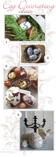 Check out the link for detailed instructions. Egg Shell Art, Egg Decorating, Equinox, Egg Shells, Holiday Crafts, Eggs, Carving, Gift Wrapping, Easter