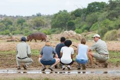 Enjoying a bush walk when a hippo all of a sudden decides to cross the dry river. Kruger National Park, National Parks, Dry River, Tourism Marketing, River Lodge, Big 5, South Africa, Safari, State Parks