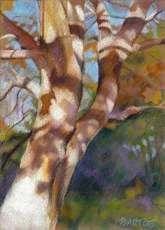 colored pencil drawing  Rhonda Bartoe Tucker