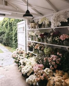 Awesome Florist Shop Design and Decor Ideas 21 - Awesome Indoor & Outdoor Fresh Flowers, Wild Flowers, Beautiful Flowers, Spring Flowers, Art Flowers, Vintage Flowers, Colorful Flowers, Beautiful Things, Flower Farm