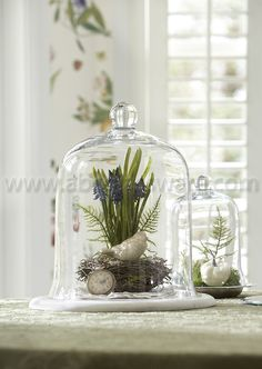 This Gass cloche or english belljar is fantastic for sheltering tender seedlings from pests. Accent your garden table or use as a food cover for your next