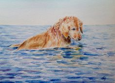 Original watercolour painting dog golden retriever by CornerCroft, £50.00