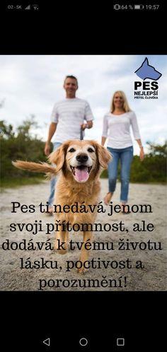 Dog Quotes, Carpe Diem, Labrador Retriever, Best Friends, Dogs, Animals, Animal Pictures, Labrador Retrievers, Beat Friends