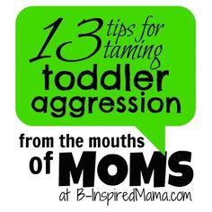 From the Mouths of Moms Taming Toddler Aggression