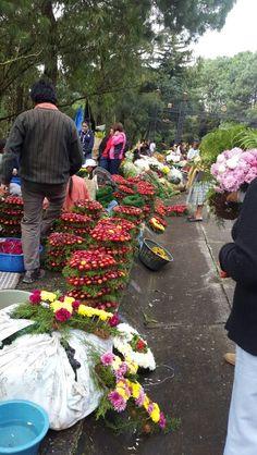 Ventas - Cementerio Las Flores