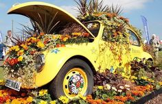 "VW Bug as a ""planter"". Flower Power Bug!"