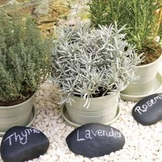 This mini herb garden is super cute, and very zen. I love the colors and the idea of chalkboard paint rocks to use as markers and labels - reusable, and classy! Plus, having herbs around is always a good idea: fresh mint tea in the mornings with a dash of honey whenever I want. I can deal with that!