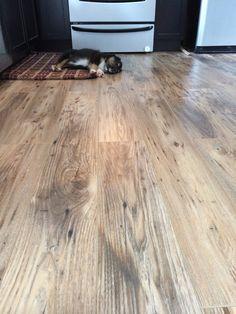 Petite Modern Life Reclaimed Chestnut Laminate Floors