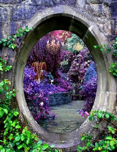 splendiferoushoney: fairy portal - Beautiful colorful fantasy gardens takes you to another world