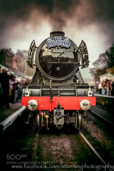 The Flying Scotsman by stephentierney