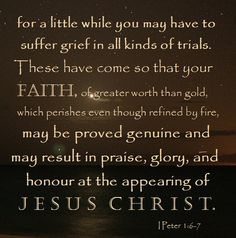 1 Peter 1:6-7 ~ Let your faith be proved genuine & may result in praise, glory & honor at the appearing of Jesus Christ
