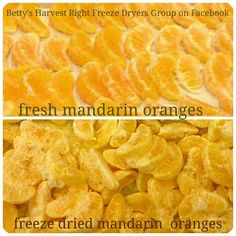 Betty's Harvest Right Freeze Dryers Group has members. A group dedicated to helping others have a positive freeze drying experience at home. Harvest Right Freeze Dryer, Vegan Recipes, Snack Recipes, Mandarin Oranges, Dried Oranges, Freeze Drying Food, Dehydrated Food, Dehydrator Recipes, Dryers