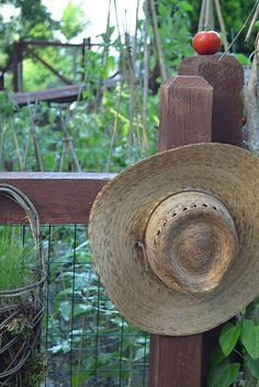 she is in the garden..... I have a straw garden hat hanging in my garden ~~just because I like it!