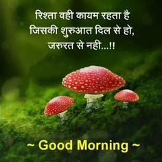 Quotes and Whatsapp Status videos in Hindi, Gujarati, Marathi Morning Images In Hindi, Good Morning Images Flowers, Hindi Good Morning Quotes, Morning Greetings Quotes, Good Morning Messages, Good Morning Wishes, Social Quotes, New Quotes, Hindi Quotes