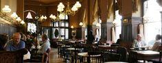 Café Sperl: Traditionelles Kaffeehaus