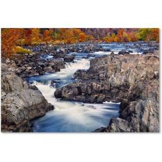 Trademark Fine Art Great Falls Canvas Art by CATeyes, Size: 22 x 32, Multicolor