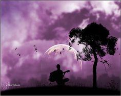 Sing Trees
