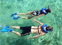 florida keys activities - Snorkeling  or anywhere else :)