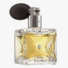 7 PRODUTOS PREFERIDOS EM O BOTICÁRIO - perfumes, óleos e hidratantes corporais