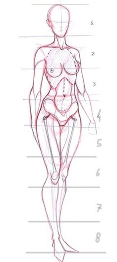 Female Proportions Reference Guide | Drawing References and Resources | Scoop.it