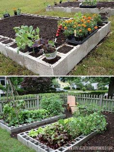 11. Concrete blocks are the perfect materials to organize an easy and cheap vegetable growing place. - 22 Ways for Growing a Successful Vegetable Garden #RaisedGarden