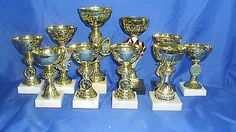 10 gold cup trophy #awards dance, #martial arts, equestrian, #sport free engravin,  View more on the LINK: 	http://www.zeppy.io/product/gb/2/152330146881/