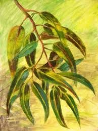 hojas pinturas ile ilgili görsel sonucu