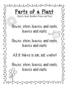 Parts of a Flower Song (Sung to Head, Shoulders, Knees, and toes)